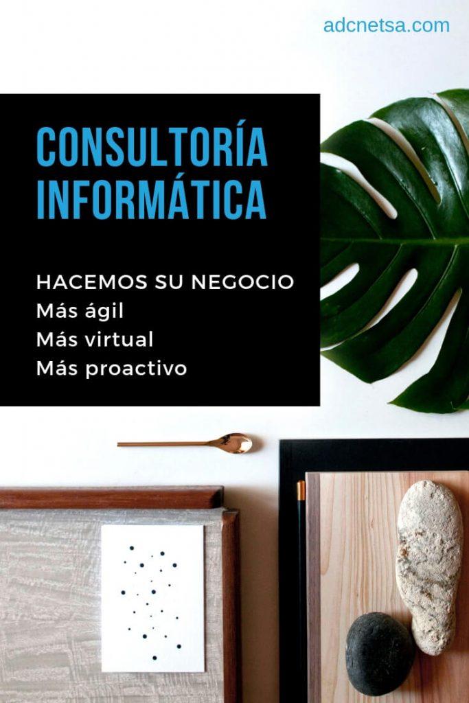 ConsultorÍa informatica